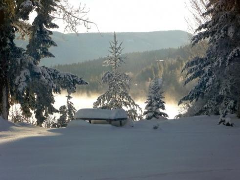 winter dream canim lake