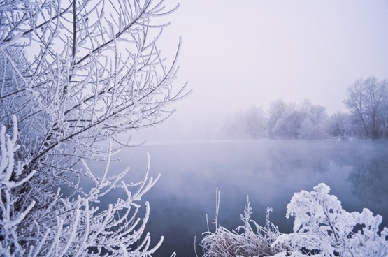 winter scene pictures free stock photos download 5 074 free stock