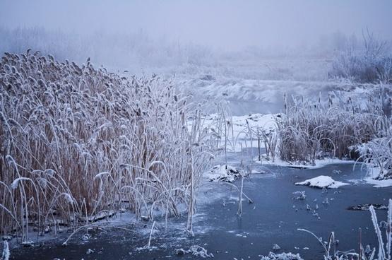 winter fog 3