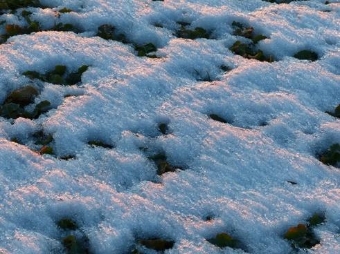 winter ground snow cover