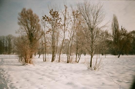 winter image lublin