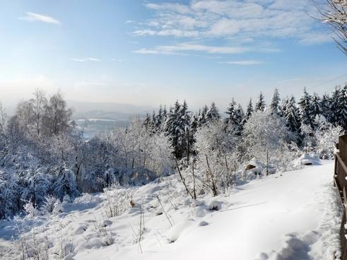 winter landscape wintry