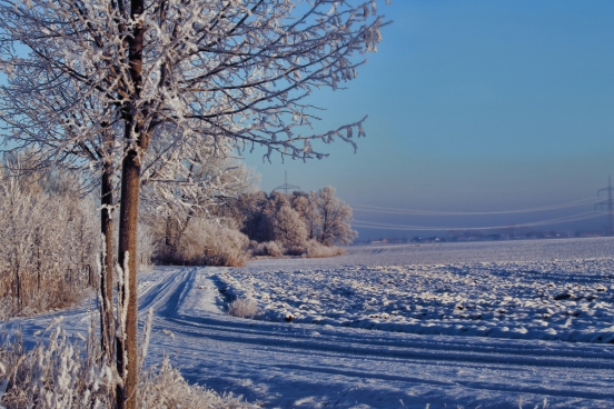 winter white snow covering in countryside