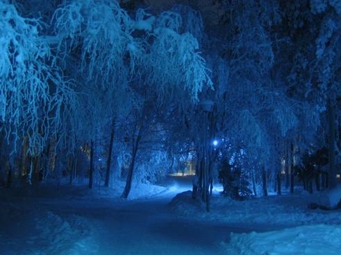 winter night blue