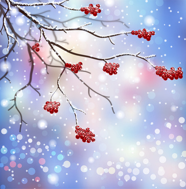 winter scenes with branch and red fruit
