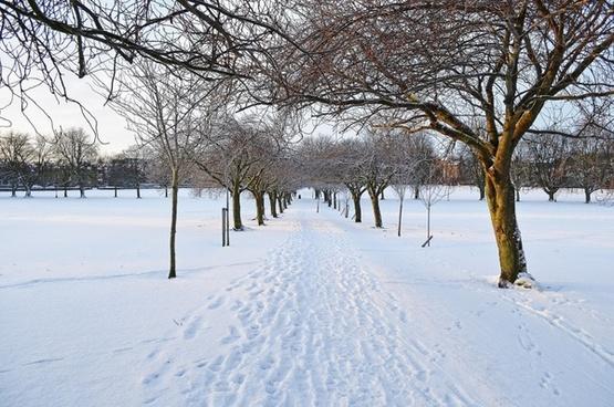 winter seasons snow