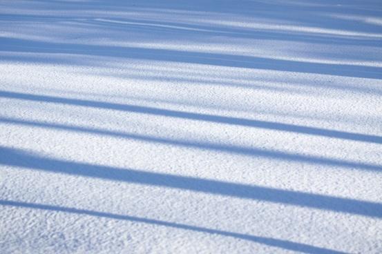 winter snow shadows