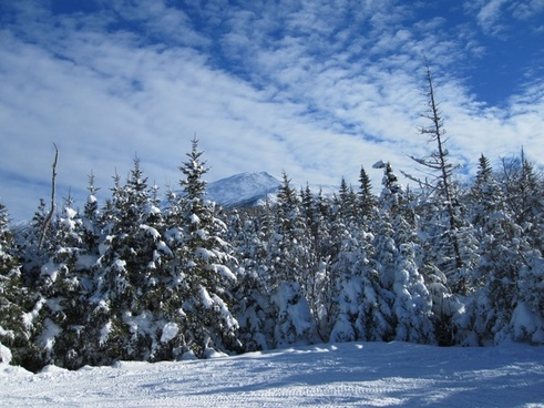 winter snow trees mountains clouds trail