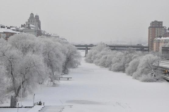 winter stockholm frozen channel rime