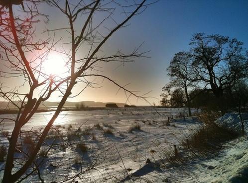 winter sun back light
