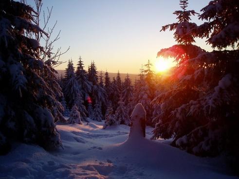 winter sun wintry cold