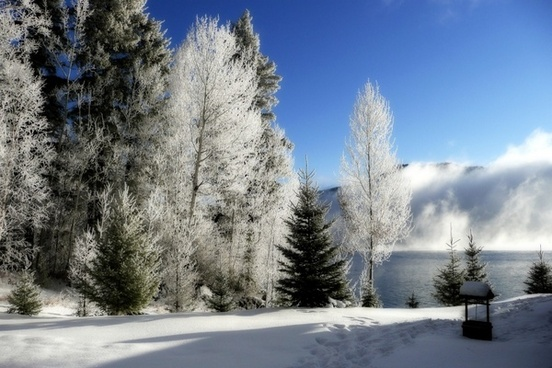 winter sunny cold
