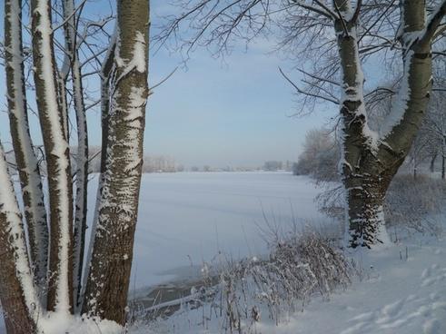 winter winter magic snow