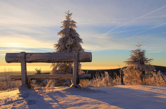 winter wooden bench