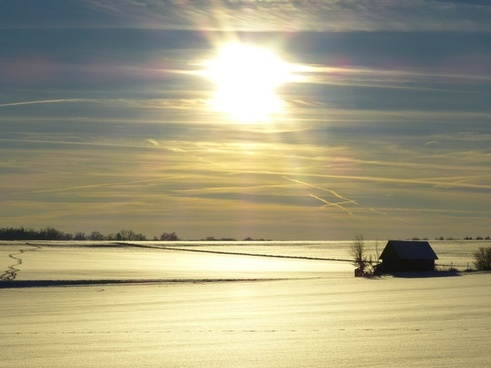 wintry winter back light