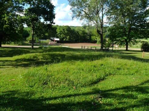 wisconsin summer farm
