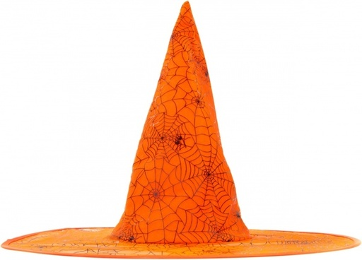 witch hat isolated