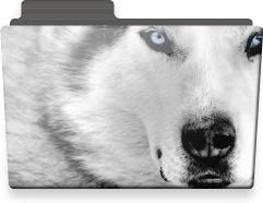 Wolf folder