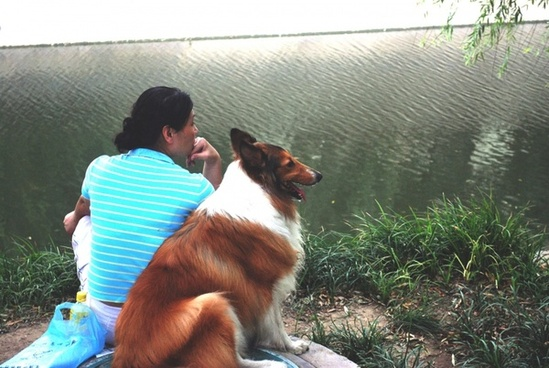 woman and collie