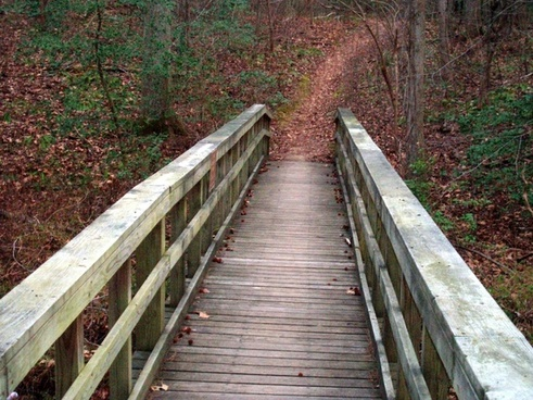 wooden bike trail bridge