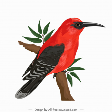 woodpecker bird icon colorful perching sketch