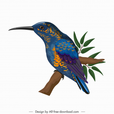 woodpecker icon colorful design perching sketch