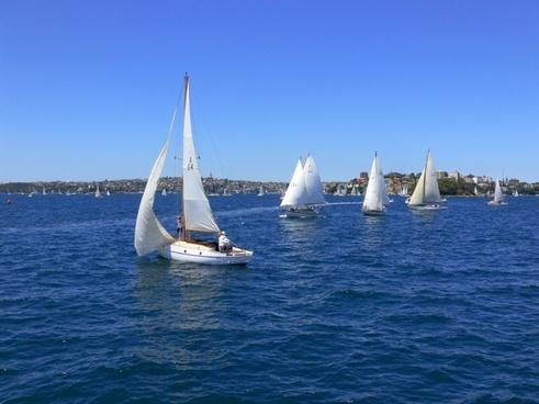 yacht sydney water