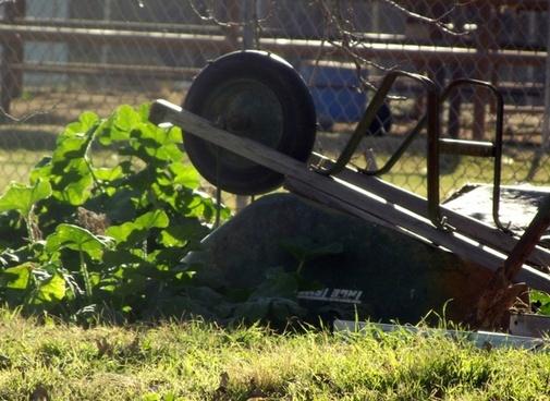 yard and wheelbarrow
