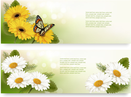 yellow and white flower banner with butterfly vector