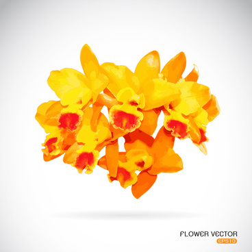 Vector yellow flower free vector download 12949 free vector for yellow flowers beautiful vectors mightylinksfo