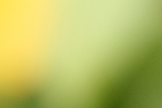 yellow green blur background