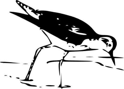 Yellow Leg Bird clip art