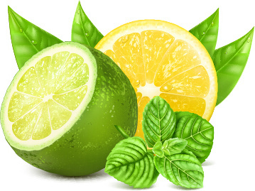 yellow lemon and green lemon vector