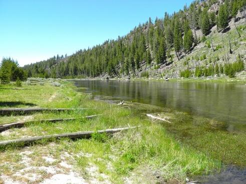 yellowstone national park wyoming stream