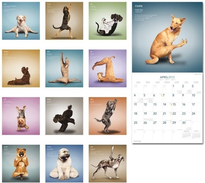 yoga dogs 2010 calendar with pictures hd picture