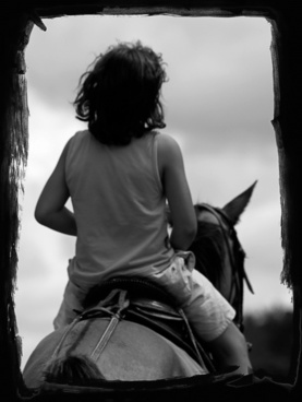 young boy horse