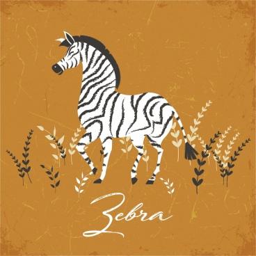 zebra drawing classical colored design