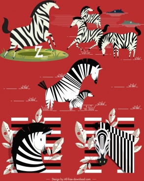zebra icons black white stripes decor