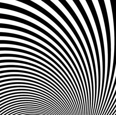 zebra stripes background vector