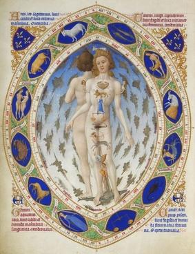 zodiac astrology zodiac sign