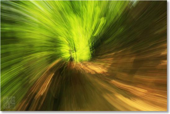 zoom amp swirl