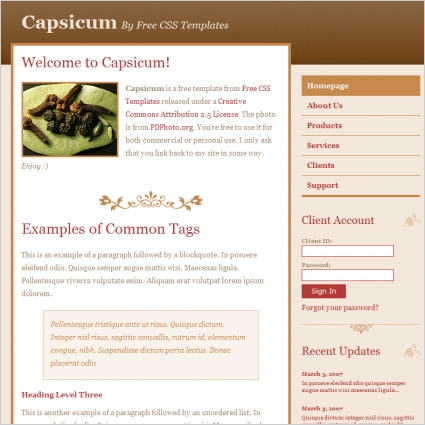 chip midnight templates - capsicum free website templates in css html js format