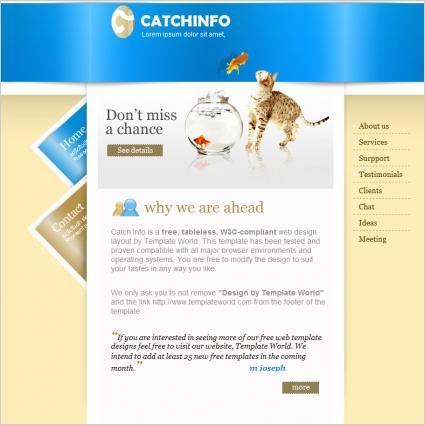 Catch Info Template