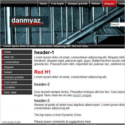 Danmya z 1.0 Template