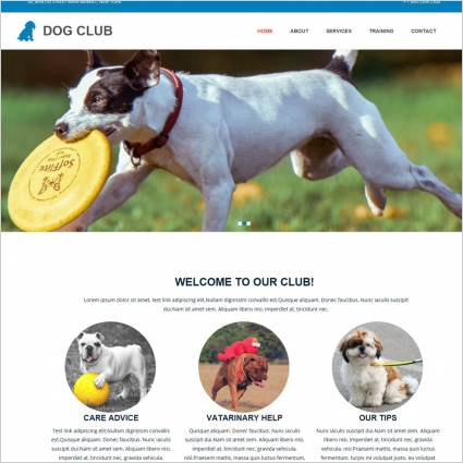 dog club template