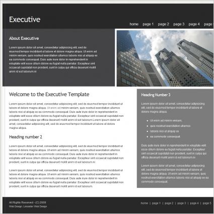 Executive Template