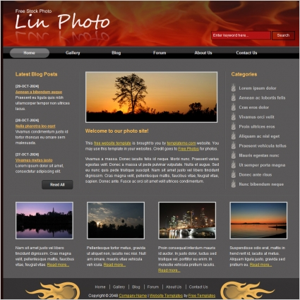 Lin photo free website templates in css html js format for free lin photo maxwellsz