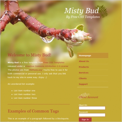 misty bud