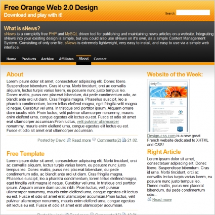 Orange Web 2.0 Template