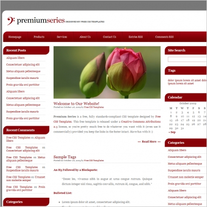 Premium series Free website templates in css, html, js format for ...
